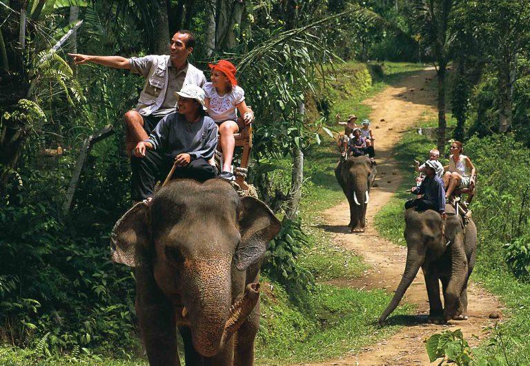 Activities with Bali Trekking Exploration