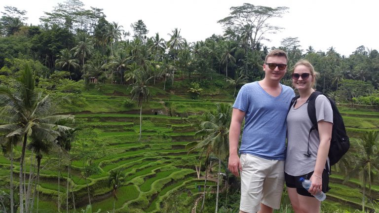 Rice Terraces, Bali Guides